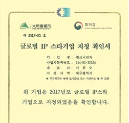 글로벌IP스타기업지정서
