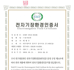 2018년 EMF-2018-00106