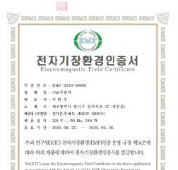 2019년 EMF-2019-00082