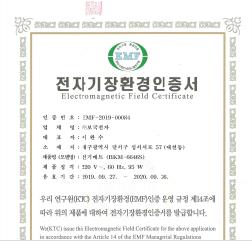 2019년 EMF-2019-00085